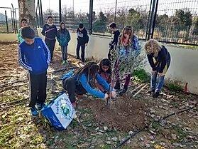 Campana El Olivo Lucio En Los Centros Escolares 2017 2