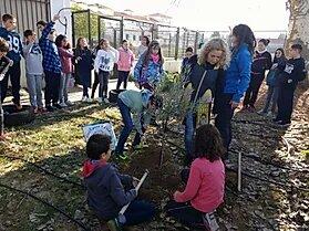 Campana El Olivo Lucio En Los Centros Escolares 2017